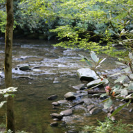 Deep-Creek-NC-Great-Smoky-Mountains-National-Park-002