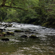 Deep-Creek-NC-Great-Smoky-Mountains-National-Park-004