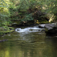Deep-Creek-NC-Great-Smoky-Mountains-National-Park-006