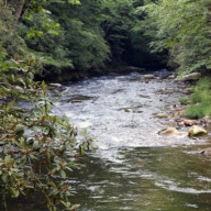 Deep-Creek-NC-Great-Smoky-Mountains-National-Park-007