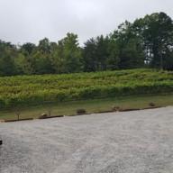 Yohnah-Vineyard-and-Winery-06