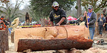 Chaptacular 2017 - Chainsaw Carving Event