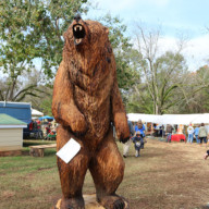 Chaptacular-2017-Chainsaw-Carving-Event-12