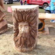 Chaptacular-2017-Chainsaw-Carving-Event-14