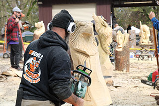 Chaptacular 2017 Chainsaw Carving Event