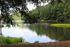 Vogel State Park and Campground